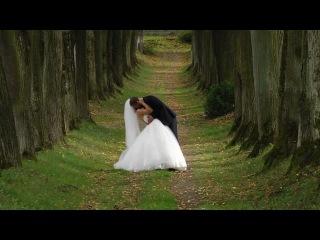 Wedding Klip Oleksiy & Galina