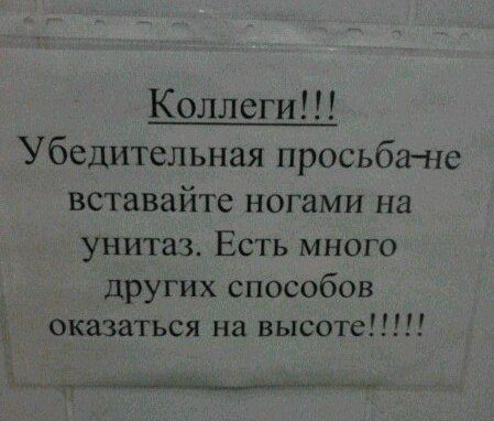 http://cs629528.vk.me/v629528813/23147/LKxVxEKo5Q4.jpg