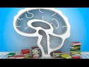 2 Hour Study Music Brain Power: Focus Concentrate Study, ☯130