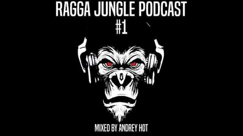 Ragga Jungle Podcast 1 mixed by Andrey HoT