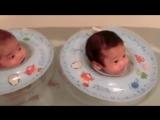Смешные малыши- детки-поплавки -)
