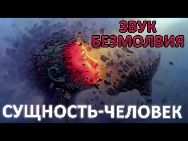 Сущность человек глава №1 из книги Звук Безмолвия Дмитрия Лапшинова
