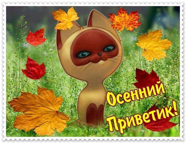 Ольга Дорошко | Псков