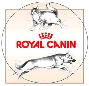 корм для кошек royal canin цена
