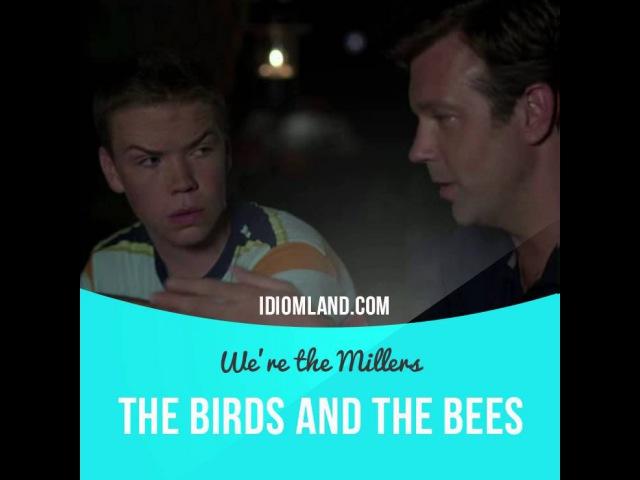Идиомы в кино: The birds and the bees (Мы - Миллеры)