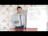 Урок №5: Какие сайты попадут в ТОП. Видеокурс