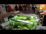 Dennerle Scaper's LED - Новый светодиодный светильник для аквариума