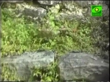 Святая гора Афон (Свято Пантелеймонов монастырь)