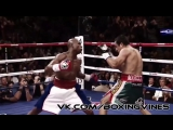 Boxing Vines | С.А.М | STRONG DIVISION |
