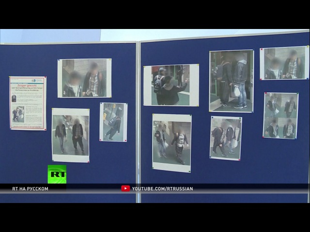 Журналист: В Германии существуют спящие ячейки ИГ и других террористических группировок