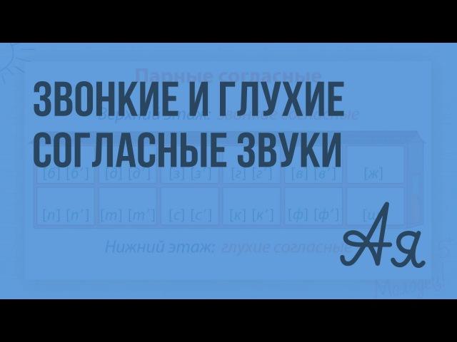 Звонкие и глухие согласные звуки. Видеоурок по русскому языку 1 класс