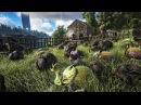 Spotlight: Dimetrodon Dung Beetle!