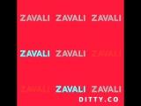 Ditty - Zavali ebasos