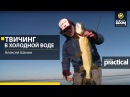 Твичинг в холодной воде Алексей Шанин Anglers Practical