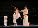 新極真会 SHINKYOKUSHINKAI The 11th world Karate championship Norichika Tsukamoto ENBU