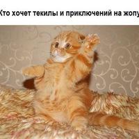 Анкета Сергей Ракушкин