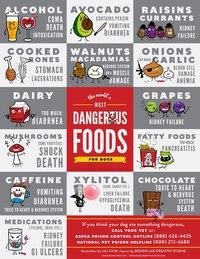 Опасные продукты - Страница 3 MSGjAAtPVR8
