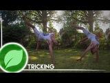 How to Touchdown Raiz (TD Raiz) & Gumbi   Tutorial
