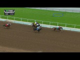 RACE REPLAY: 2016 Sham Stakes