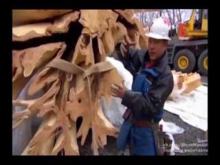 Уникальные дома из дерева (2013) эпизод 2