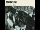 The Black Furs - Doomed Blues (Full Album 2016)