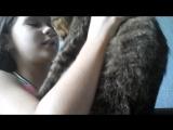 меня кот цылует пряма в губы