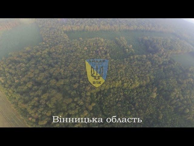 Лісовий апокаліпсис у Вінницькій області