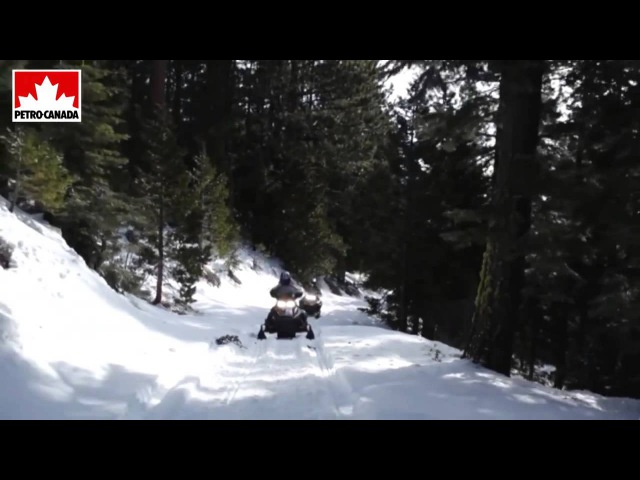 Моторное масло Petro Canada Snowmobile
