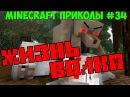 Жизнь волка в Майнкрафте [ Самые смешные приколы в Minecraft 34 ]