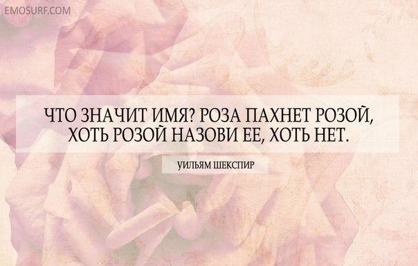 Картинки по запросу - Что значит имя? Роза пахнет розой, хоть розой назови ее, хоть нет.