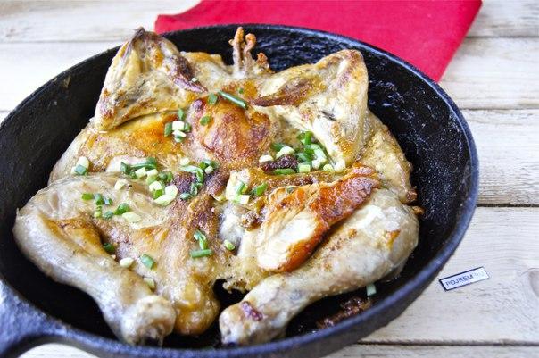 Курица табака в духовке с фото пошаговый