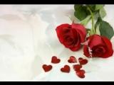 Алая роза -Виктор Королёв