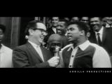 Muhammad Ali (Tribute Gorilla Productions)