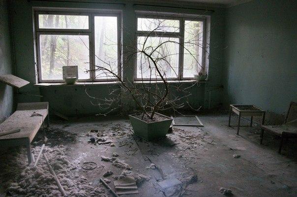 Парень из Минска прожил три дня в Припяти, ночуя в заброшенной квартире (35 фото)