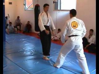 Real aikido Leskovac - Aleksić Nenad - Stalone