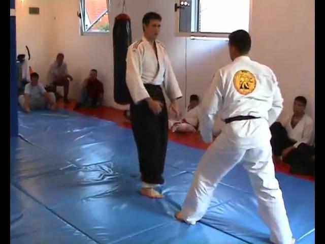 Real aikido Leskovac Aleksić Nenad Stalone