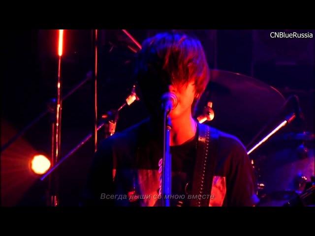 CNBLUE Zepp Tour Lady 2013, Y Why [rus sub, CNBlueRussia]
