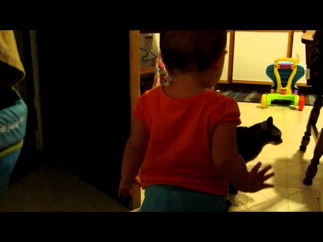 Cat talks to baby