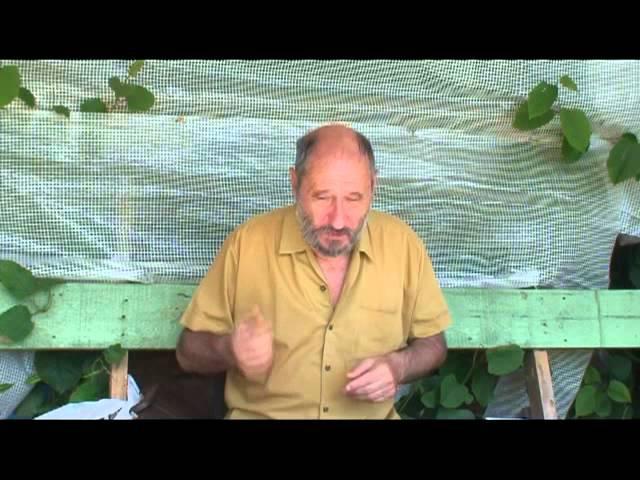 В.А. Шапиро о проблемах плодородия 2 часть.mp4