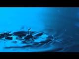 Футажи для видеомонтажа Падающая капля воды