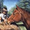 """.•*•_Приют для лошадей """"Эллина""""_.•*•"""