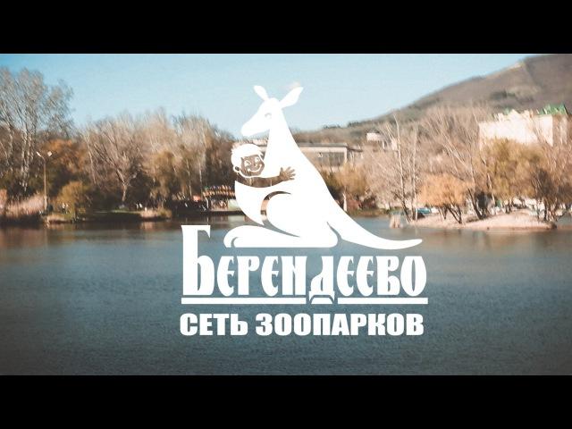 VIDEOWORKS: зоопарк Берендеево (Ставрополь-Пятигорск)