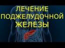 ✔Как вылечить поджелудочную железу в домашних условиях Лечение хронического п
