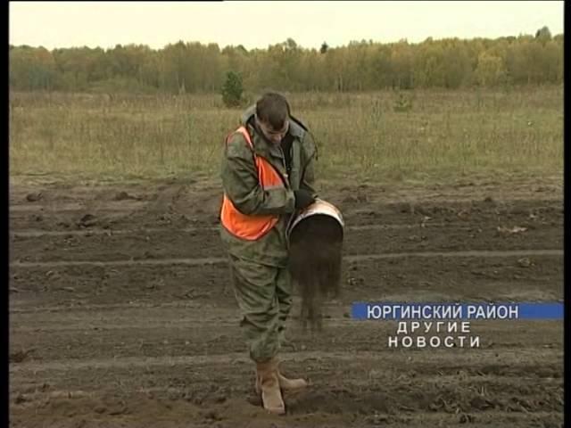 Кузбасские ученые разработали новый эффективный способ рекультивации земель