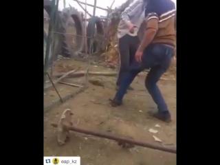 Ойбай шщс жаным