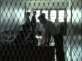 Крестная Мать - Bella Mafia Дэвид Грин, 1997, криминальная драма-1