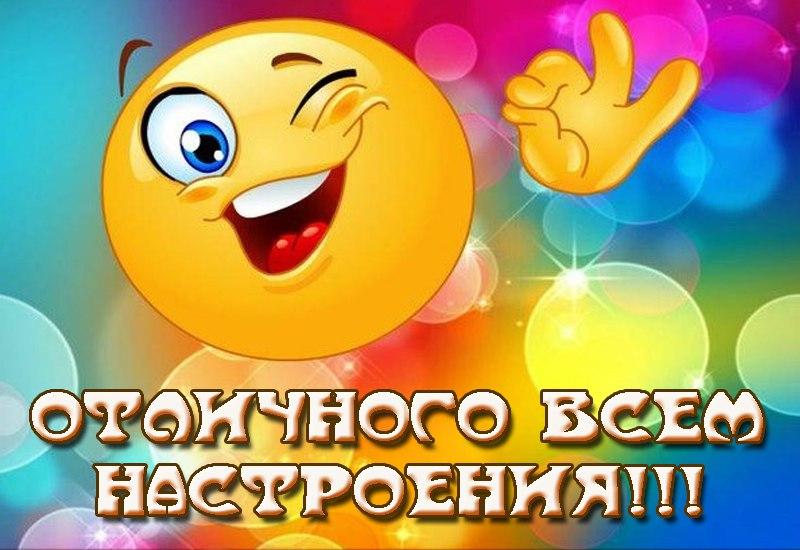 http://cs630024.vk.me/v630024760/259a/GHzV3I0-Xe4.jpg