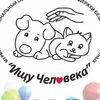 Фонд поддержки бездомных животных «Ищу Человека»