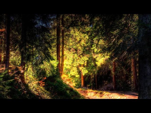 DJ Dado - Agent Vyper (Twin Peaks Theme)