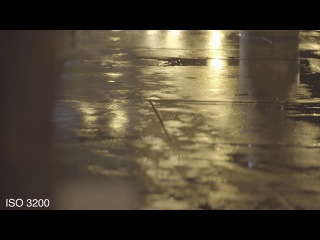 Sony a6300 Low Light Test - ungraded